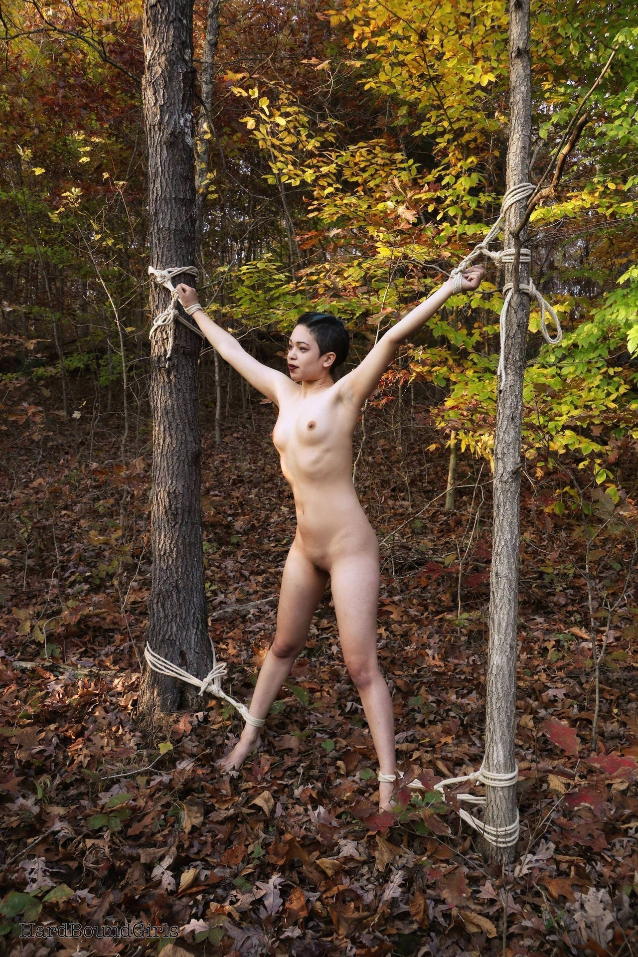 Tied To Tree Nude
